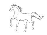 Horse_31