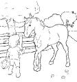 Horse_36