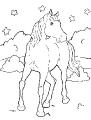 Horse_38