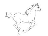 Horse_65