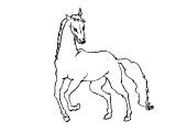 Horse_66