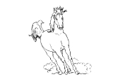 Horse_68